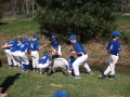 Baseball...the Team... a Band of Brothers