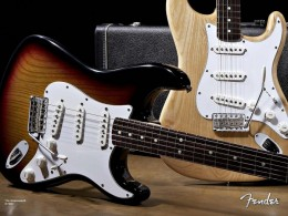 Single coil pickups in a Fender Stratocaster