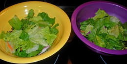 Step 4 - Divide up the Romaine Lettuce