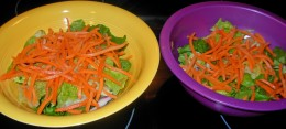 Step 6 - Divide up the Shredded Carrots