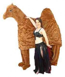 Costume Ideas Starting With The Letter Quotcquot  sc 1 st  Meningrey & Kids Camel Costume Ideas - Meningrey