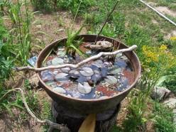 Biologically Filtered Pond