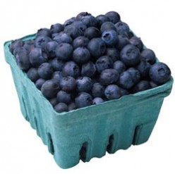 Your Brain on Blueberries