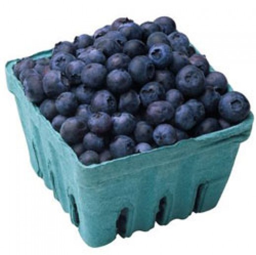 Blueberries are wonderful for our bodies and mind.  These delicious, tart little guys pack a great deal of antioxidants and nutrients. They're also low in calories, which make them one of a dieters best friends.