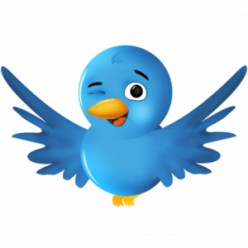 How To Get The Most Twitter Followers In Very Little Time