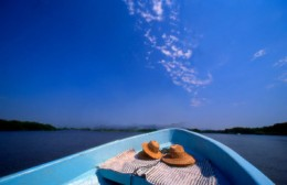 Get close to the ocean with ferry and boat rides - some services might offer meals to go with the cruise too!