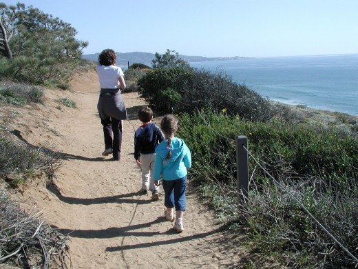 Torrey Pines State Reserve offers trails and beaches to explore
