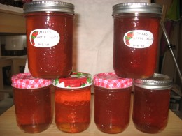 Apple Jellies - canned at my house!