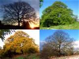 Your Spiritual Seasons Hubpages