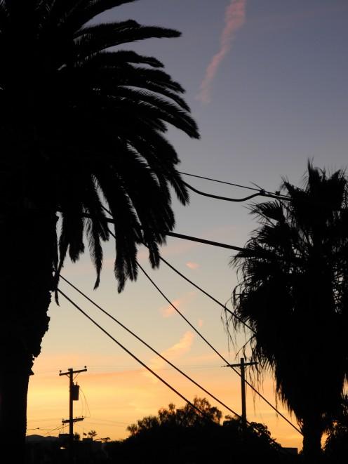 Sunrise Chemtrails - San Diego, January 2011