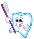 Dental Practice Manager Job Description