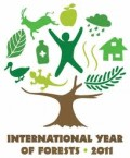 International Forests Year