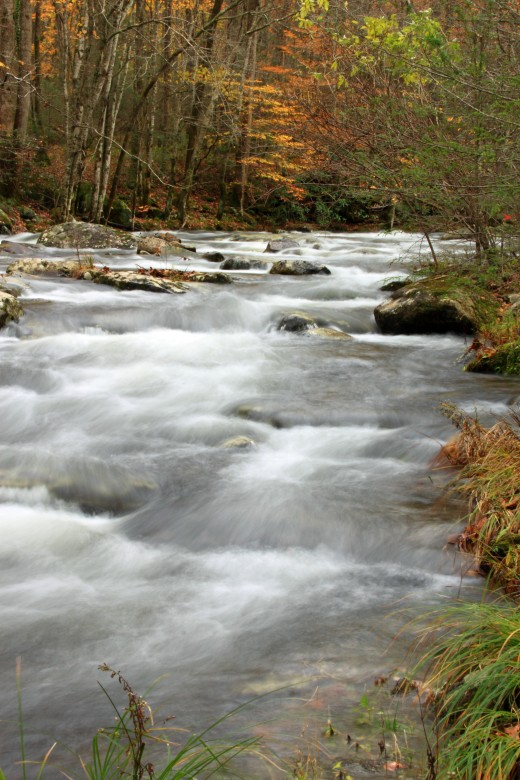 Lots of streams and rivers in the Great Smoky Mountains!