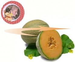 If I Were A Cantaloupe
