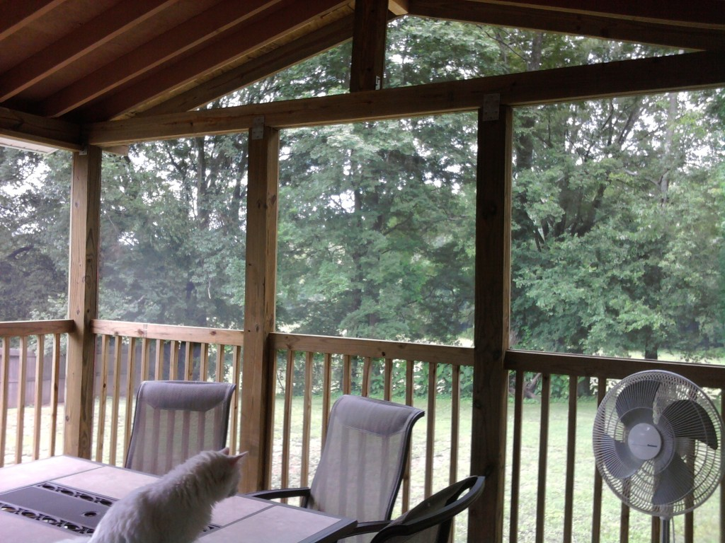building a screened in porch. Black Bedroom Furniture Sets. Home Design Ideas