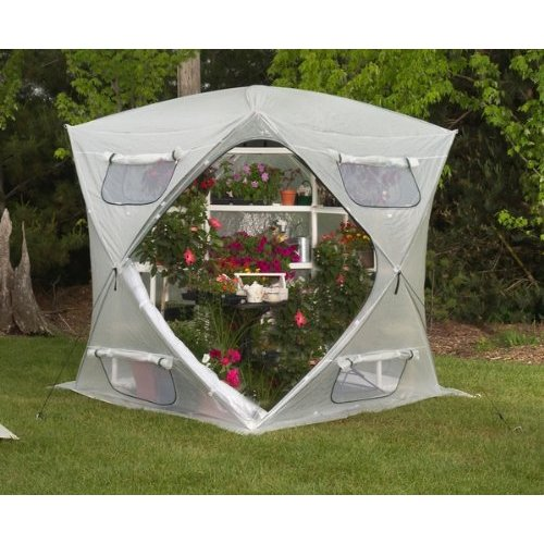 Pop Up Portable Greenhouse Dome - BloomHouse FHBH600
