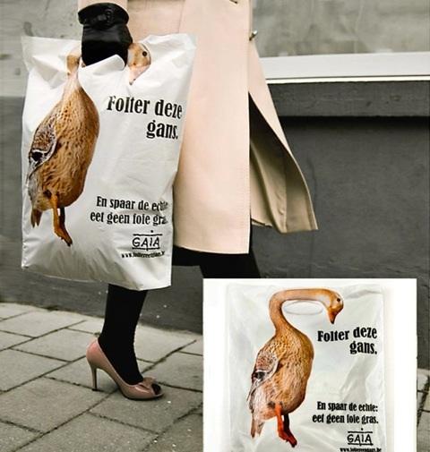 Animals Torture