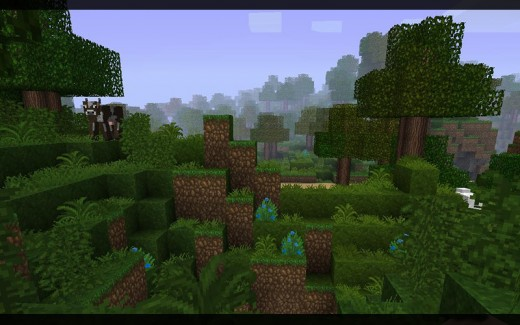 John Smith HD Texture Pack with Wild Grass and Better Light mods installed.