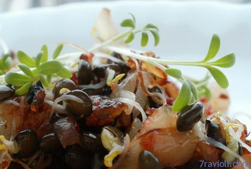 Sprouted black lentils in salad