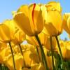emmapad12 profile image