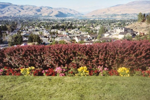 Wenatchee Valley, Washington State