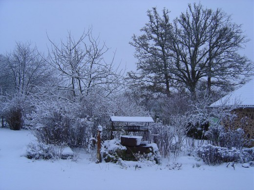 Our garden and well: Limousin was a magical wonderland this winter