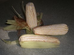 Mexican White Corn is very High in Fiber and Lower in Sugars