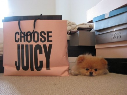 Boo chooses Juicy for Fashion