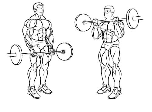 Barbell curls will help you build huge arms