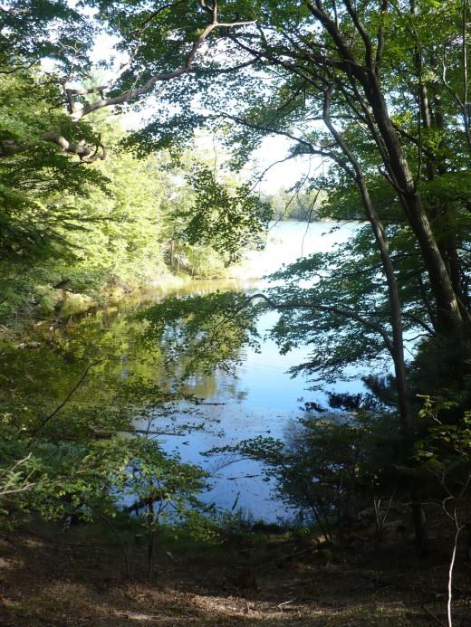 Lost Lake, Ludington State Park