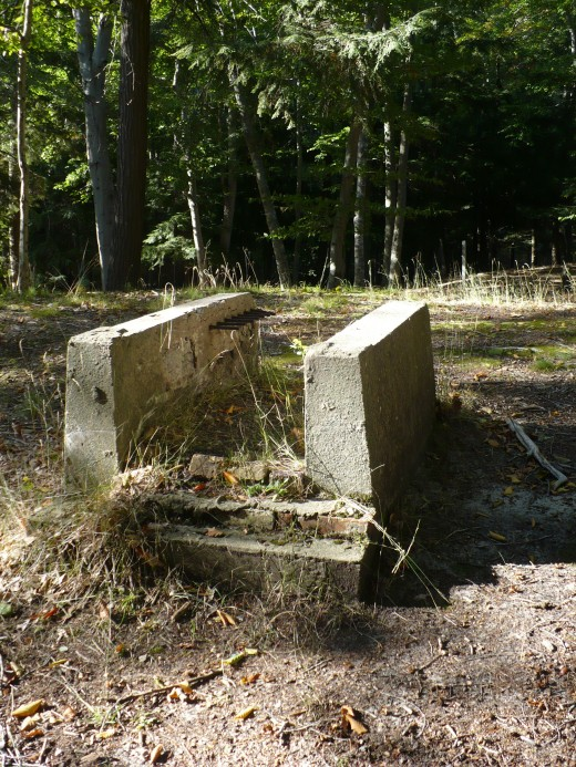 Old foundation of some sort along a hiking trail, Ludington State Park