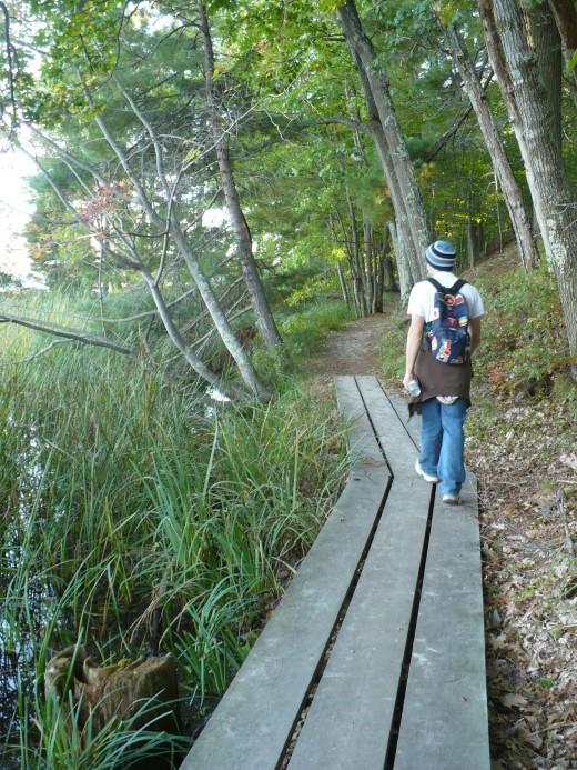Hiking along Island Trail, Ludington State Park