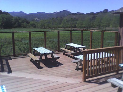 There are many picnic tables, some with good views of a vineyard at the Avila Barn.