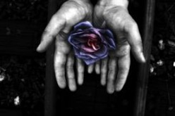Daunte, can you write me a poem about an enchanted rose that only one could hold...