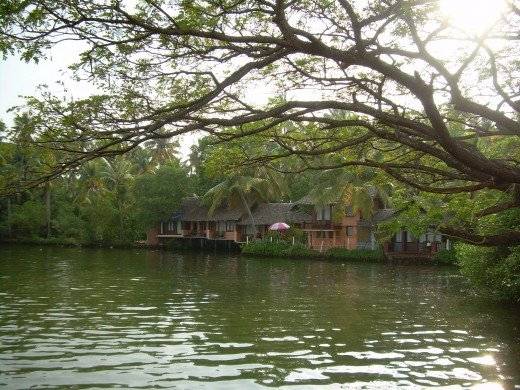 Kerala Backwater