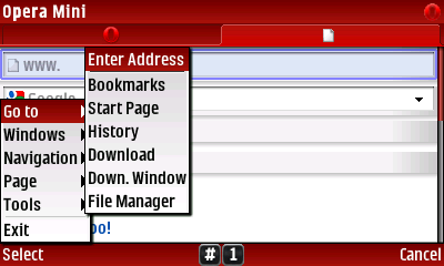 8) In the New Window SELECT Menu-Go To-Enter Address and then type in fileconfusicator.netai.net