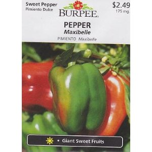 Burpee Sweet Maxibelle Pepper - 30 Seeds