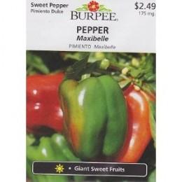 Burpee Sweet Maxibelle Pepper - 30 Seeds