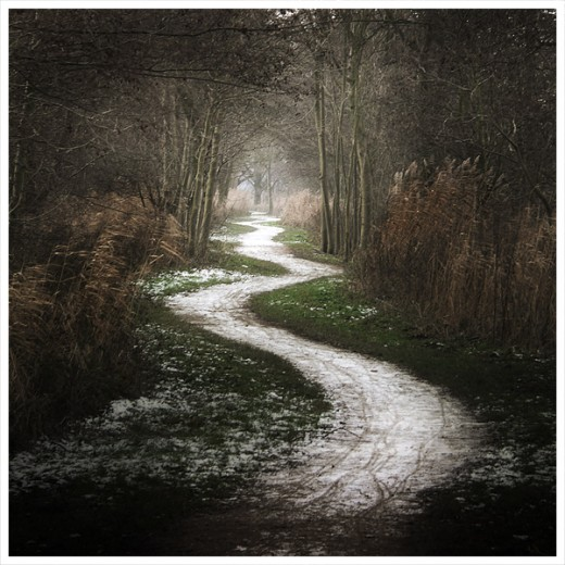 Finding your own path...