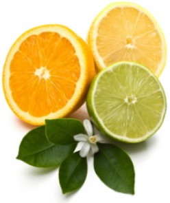 Some Important Facts About Vitamin C