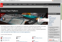 Disabling automatic updates in Adobe Flash Player