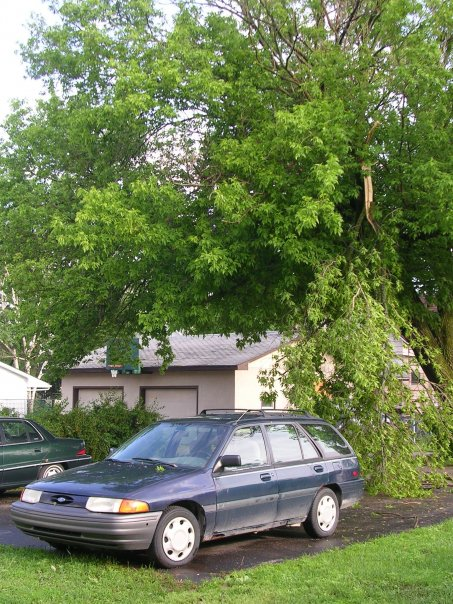 In our driveway, this tree branch barely missed hitting Adam's car.  (Manistee, Michigan)