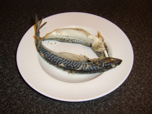 Poached fresh mackerel