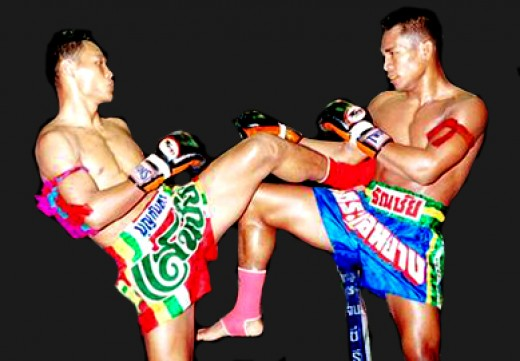 Professional fighters using Twins gloves