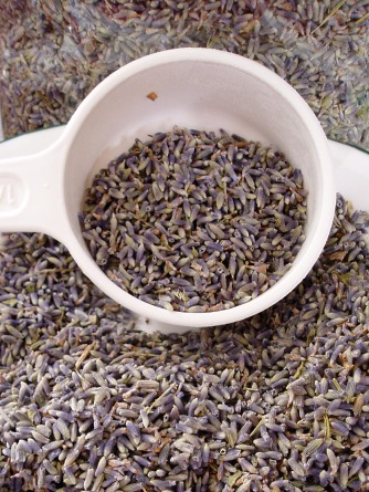 Whole, dried lavender buds