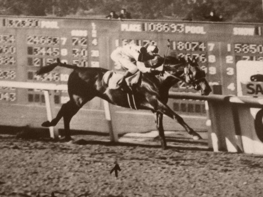 Seabiscuit winning