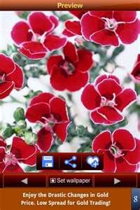 """The """"Flowers Wallpapers"""" apps lets you choose from among a variety of gorgeous wildflowers."""