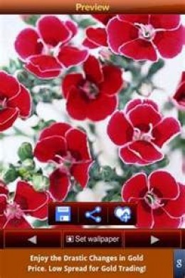 "The ""Flowers Wallpapers"" apps lets you choose from among a variety of gorgeous wildflowers."
