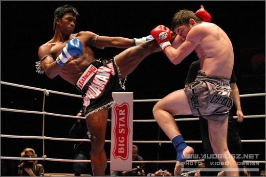 The MMA gym you choose should teach muay thai and brazilian jujitsu
