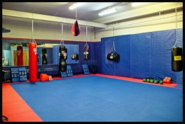 The MMA gym you select should be properly matted